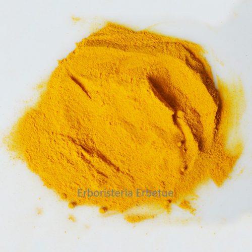 curcuma polvere rizoma erboristeria erbetue modena