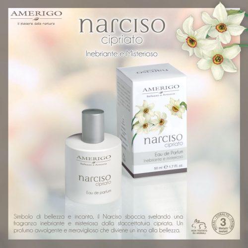 narciso cipriato eau de parfum