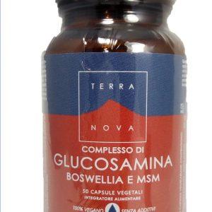 terranova complesso glucosamina boswellia msm complex magnifood