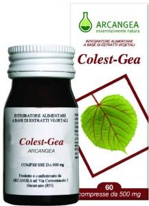 arcangea colest gea 1