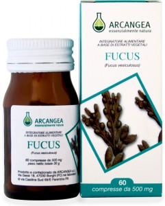 arcangea fucus