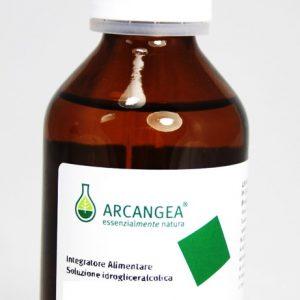 arcangea macerato di gemme 100 ml 2