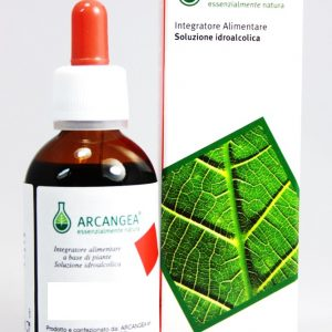 arcangea soluzione idroalcolica  32