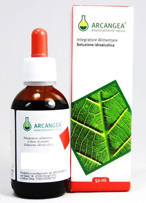 arcangea soluzione idroalcolica  40