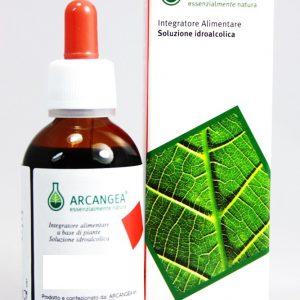 arcangea soluzione idroalcolica  48