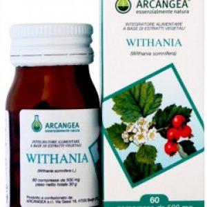 arcangea withania compresse