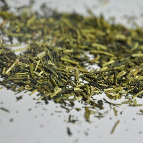 Te verde kukicha bancha rametti erboristeria erbetue